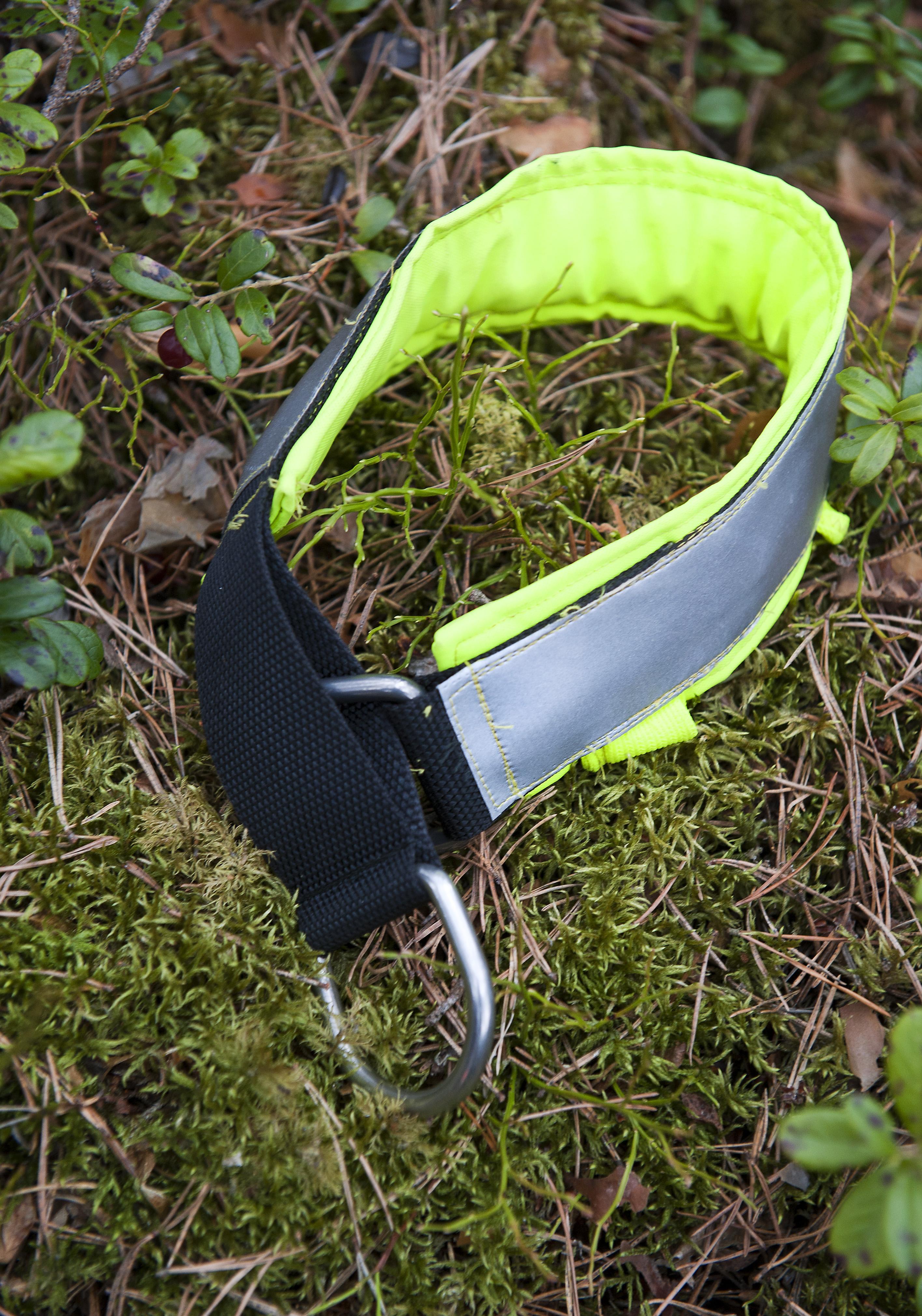 Halsband/Linor