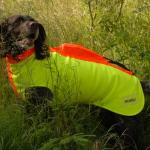 skyddsväst för hund