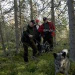 Björn eftersök Rällsjön